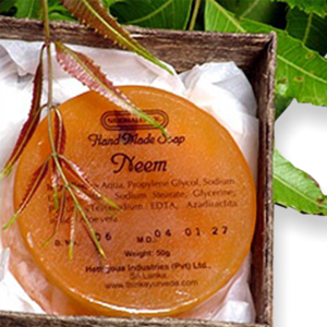 Hand Made Soap - Neem