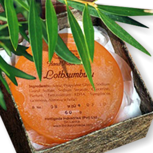 Hand Made Soap - Lothsumbulu